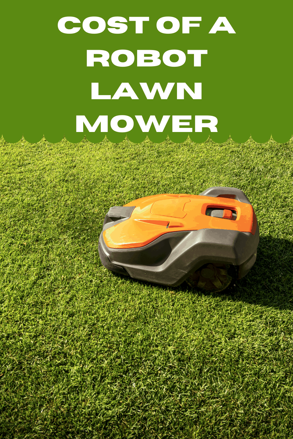 cost of a robot lawn mower to cut your grass